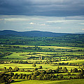 Pastoral Fields, Near Clonea, County by Panoramic Images