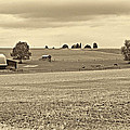 Pastoral Pennsylvania Sepia by Steve Harrington
