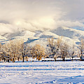 Pasture Land Covered In Snow With Taos by Panoramic Images