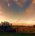 Pastureland by Don Schwartz