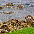 Patch Reefs At Point Amour In Labrador by Ruth Hager