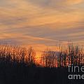 Patchwork Sunset by Kathy DesJardins