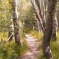 Path 1 by Pamela Cooper