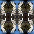 Path Of Flowers 2 by Renee Trenholm