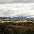 Path Of The Pioneers - Split Rock - Jeffrey City - Wyoming by Diane Mintle