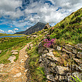 Path To Lake Idwal by Adrian Evans