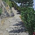 Path To L'eremo Sul Mare by Jennifer Viola