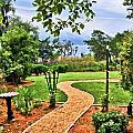 Garden Path To Wild Marsh by Ginger Wakem