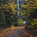 Path To Multnomah Falls by Mark Kiver