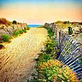 Path To The Beach by Carolyn Derstine
