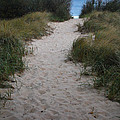Path To The Dunes by Pat Lucas
