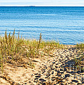 Path To The Lake Superior Beach by Les Palenik