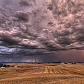 Path To The Storm by Mark Kiver