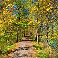 Pathway Along The Ohio And Erie Canal  by John M Bailey