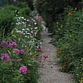 Pathway Of Monet's Garden by Anita Miller