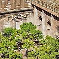 Patio De Los Naranjos Of Seville Cathedral by Artur Bogacki