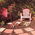 Patio Garden by Elinor Helen Rakowski