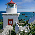 Patrick's Point Lighthouse by Jim DeLillo