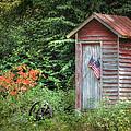 Patriotic Outhouse by Lori Deiter