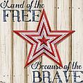 Patriotic Spirit Barn Star I by Paul Brent