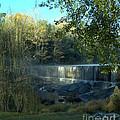 Patsiliga Creek Falls by Donna Brown