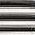 Pattern - Corrugated Metal by Les Palenik