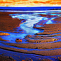 Patterns In The Sand by Hal Halli