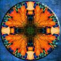 Patterns Of Autumn by Jo-Anne Gazo-McKim