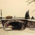 Patterson Creek Bridge by Betty-Anne McDonald