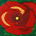 Patty's Poppy by Maura Satchell