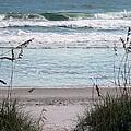 Peace At The Beach by Cynthia Guinn