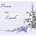 Peace On Earth 2 by Priscilla Burgers