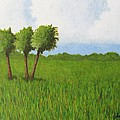 Peace River Prairie by John Lasco