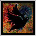 Peace Series Xi by Wendie Busig-Kohn