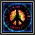 Peace Series Xxiii by Wendie Busig-Kohn
