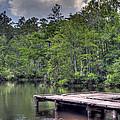 Peaceful Dock by David Troxel