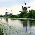 Peaceful Dutch Canal by Carol Groenen