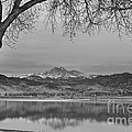 Peaceful Early Morning First Light Longs Peak View Bw by James BO Insogna