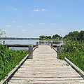 Peaceful Fishing Dock by Donna Wilson