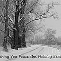 Peaceful Holiday Card by Carol Groenen