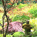 Peaceful Japanese Garden by Carol Groenen