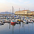 Peaceful Marina by Kate Brown