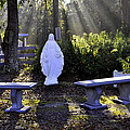 Peaceful Place To Pray With Mary by Terry Sita