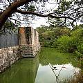 Peaceful Pond by Claudette Bujold-Poirier