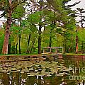 Peaceful Pond by John Malone