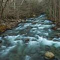 Peaceful River by Randy Walton