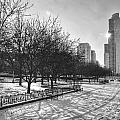 Peaceful Side Of Chicago by Nikki Watson    McInnes