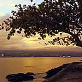 Peaceful Sundown On Hilo Bay - Hawaii by Daniel Hagerman