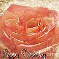 Peach Rose Birthday Card by Debbie Portwood