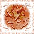 Peach Rose Sqrare Digital Paint by Debbie Portwood
